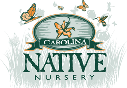 Carolina Native Nursery